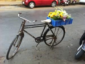 vélo bombay 1